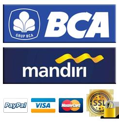BCA , Mandiri , Visa dan Paypal